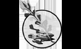Sage Stone Botanicals