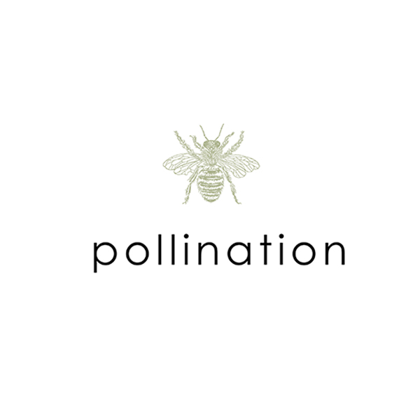 Pollination Flowers and Plants