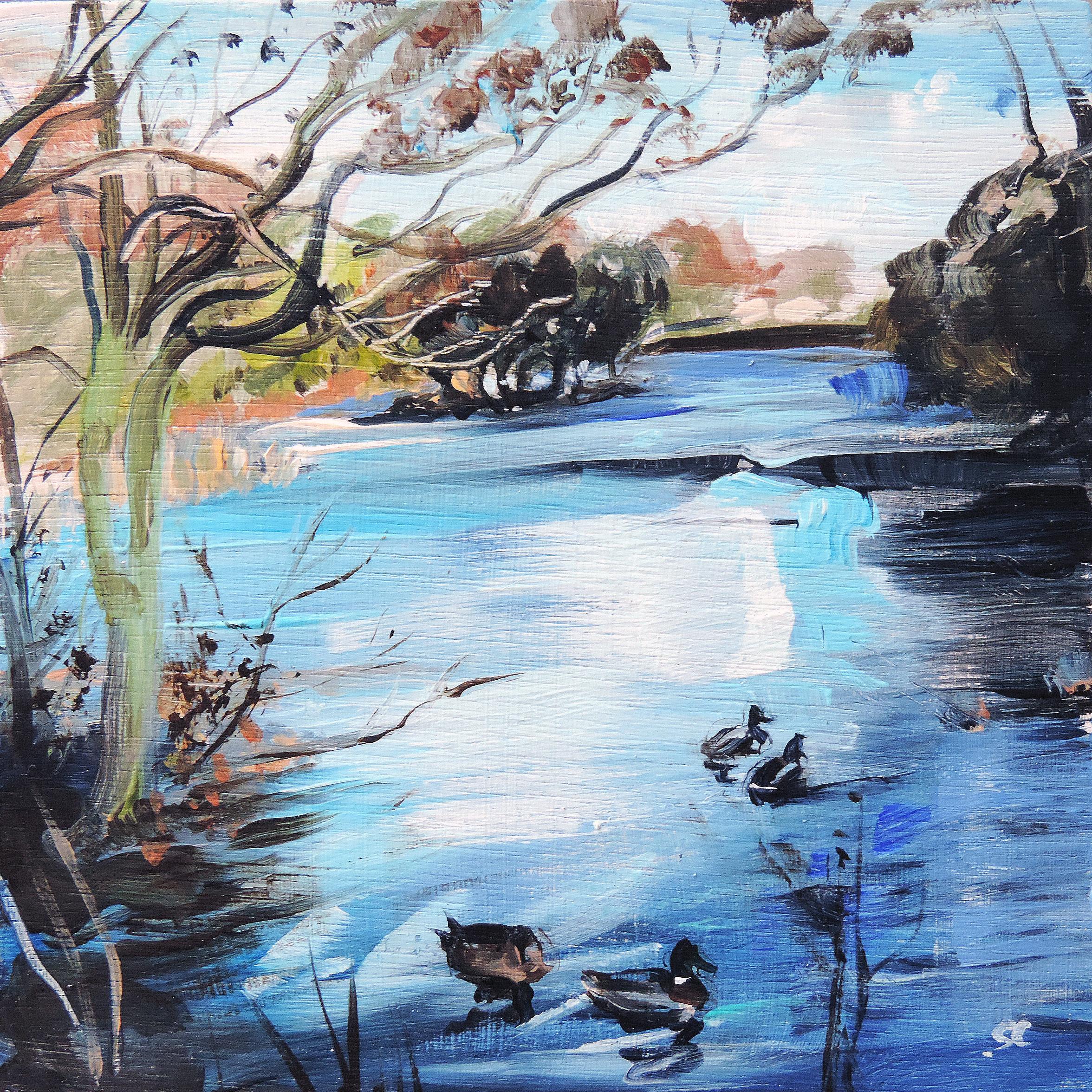 Sheila Chapman Art