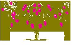 Azienda agricola Buoni Frutti 25