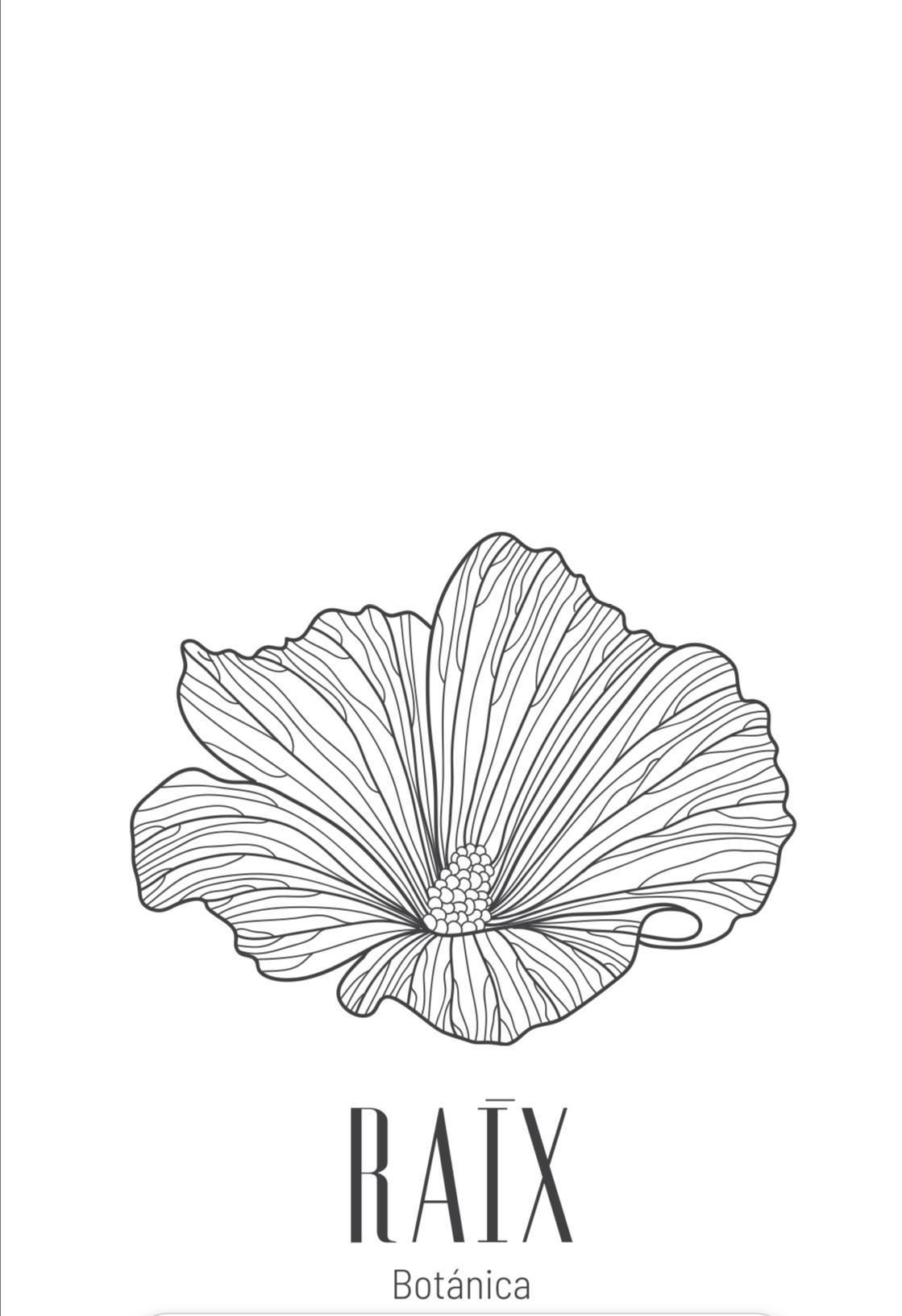 Raix Botánica