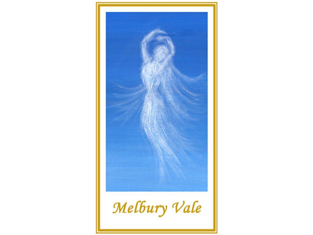 Melbury Vale Vineyard