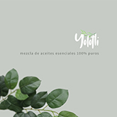 Yolotli