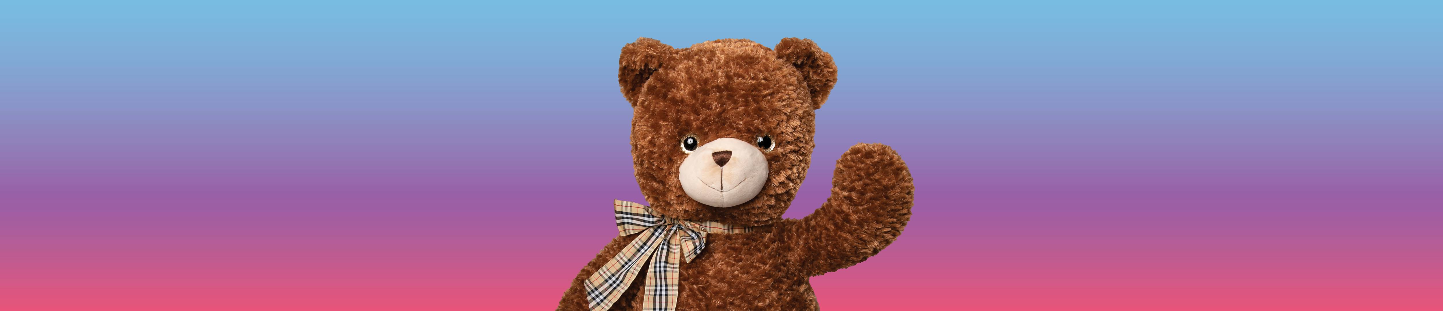 Teddy for a Toonie