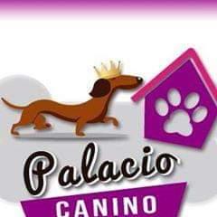 Palacio Canino