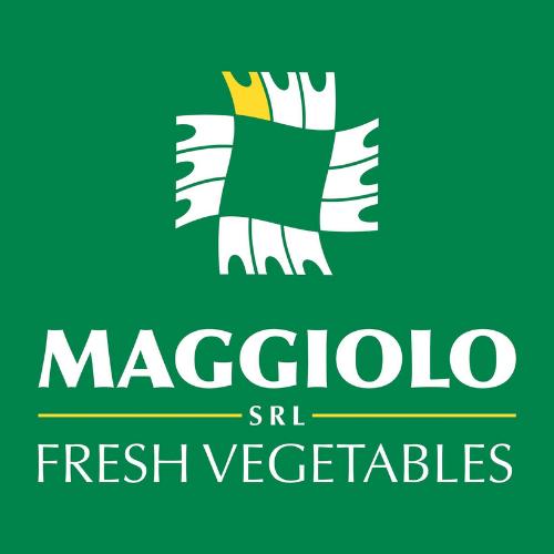 Maggiolo s.r.l